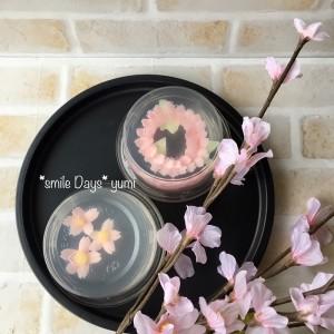 フラワーゼリー桜 (1)